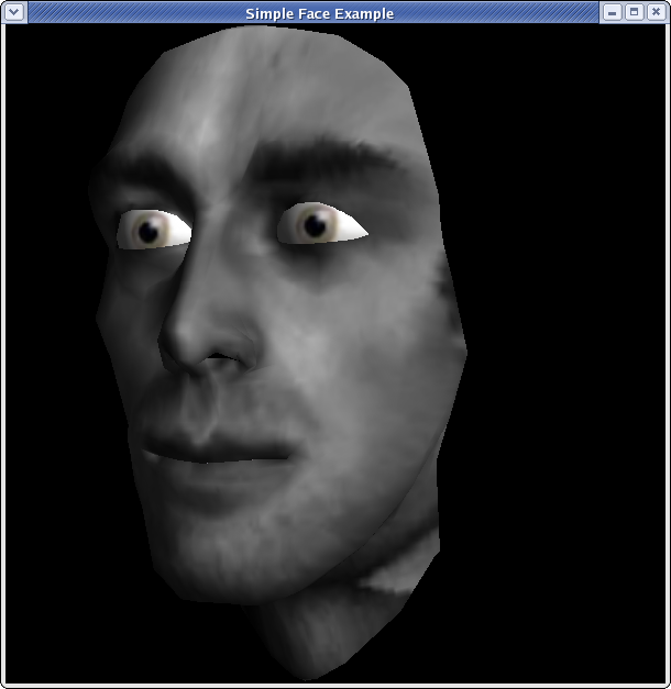 3D Face Textures http://chenlab.ece.cornell.edu/projects/Portable3DFaces/